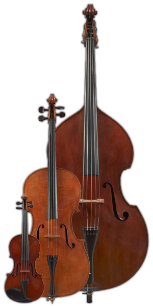 Double basses and violins from Malcolm Healey at Healey Violins